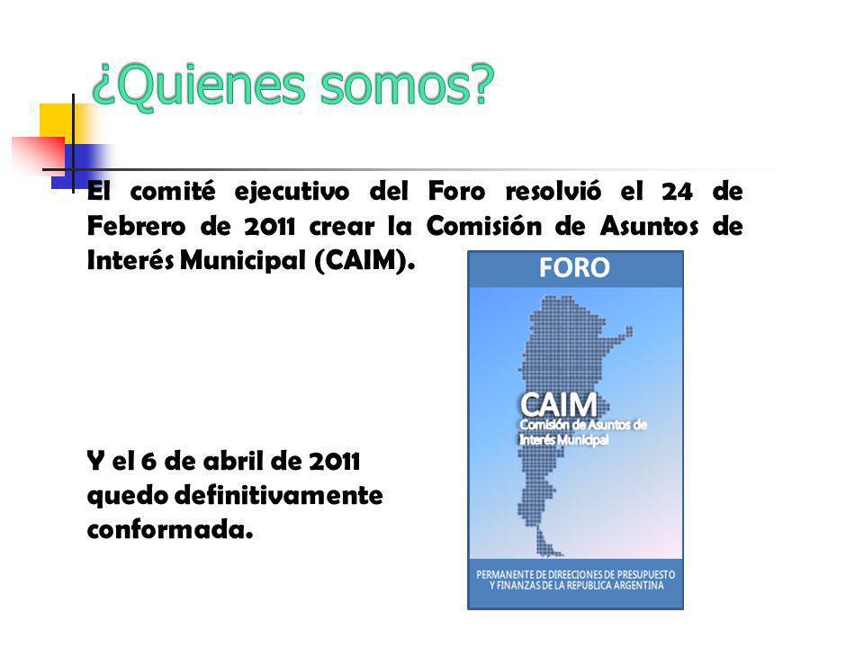 El comité ejecutivo del Foro resolvió el 24 de Febrero de 2011 crear la Comisión de Asuntos de Interés Municipal (CAIM).