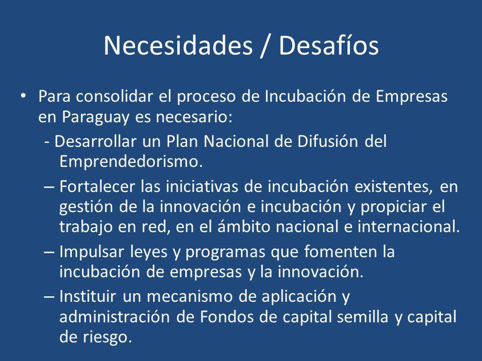Necesidades / Desafíos Para consolidar el proceso de Incubación de Empresas en Paraguay es necesario: - Desarrollar un Plan Nacional de Difusión del E