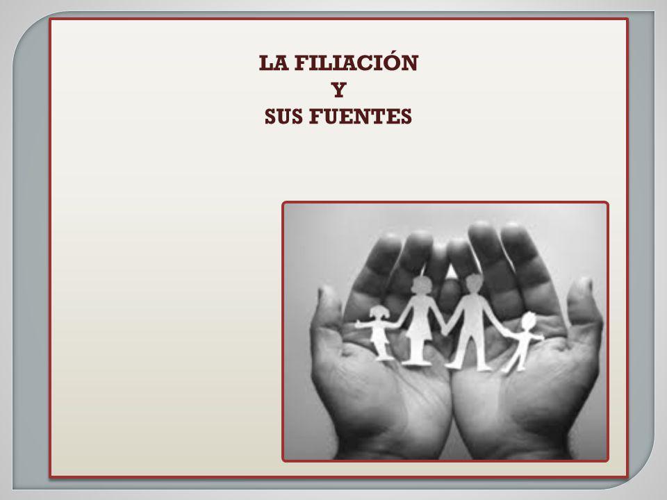 EL MAÑANA PROYECTO DE REFORMA CC DETERMINACIÓN DE LA MATERNIDAD Artículo 565 En la filiación por naturaleza, la maternidad se establece con la prueba del nacimiento y la identidad del nacido.