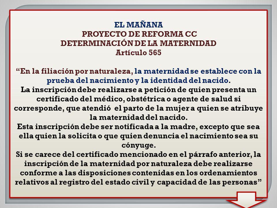 EL MAÑANA PROYECTO DE REFORMA CC DETERMINACIÓN DE LA MATERNIDAD Artículo 565 En la filiación por naturaleza, la maternidad se establece con la prueba