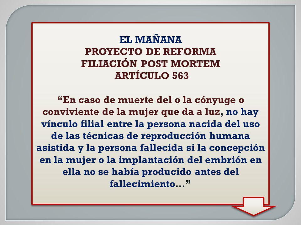 EL MAÑANA PROYECTO DE REFORMA FILIACIÓN POST MORTEM ARTÍCULO 563 En caso de muerte del o la cónyuge o conviviente de la mujer que da a luz, no hay vín