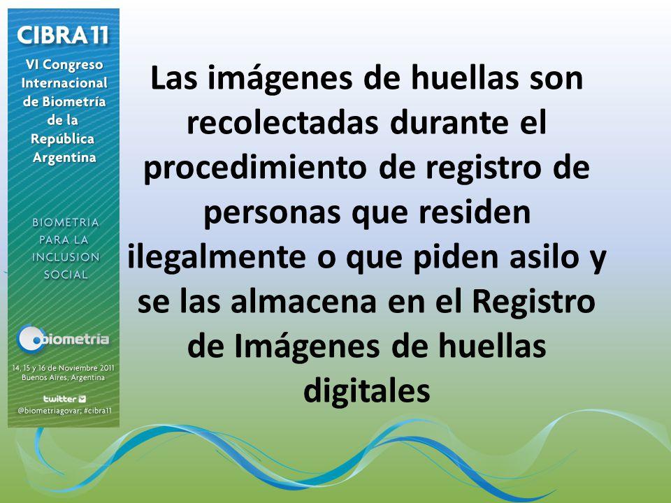 Las imágenes de huellas son recolectadas durante el procedimiento de registro de personas que residen ilegalmente o que piden asilo y se las almacena