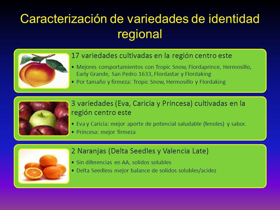 Caracterización de variedades de identidad regional 17 variedades cultivadas en la región centro este Mejores comportamientos con Tropic Snow, Flordap