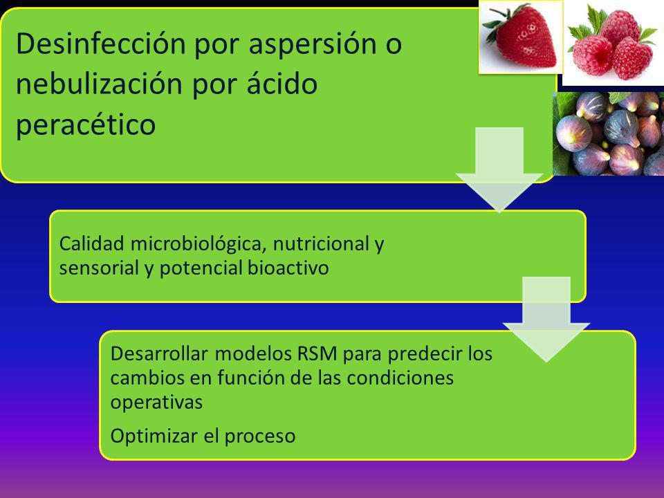 Desinfección por aspersión o nebulización por ácido peracético Calidad microbiológica, nutricional y sensorial y potencial bioactivo Desarrollar modelos RSM para predecir los cambios en función de las condiciones operativas Optimizar el proceso