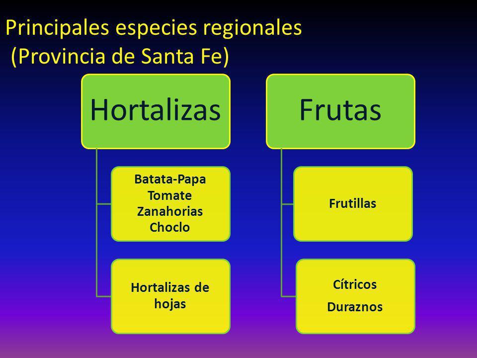Hortalizas Batata-Papa Tomate Zanahorias Choclo Hortalizas de hojas Frutas Frutillas Cítricos Duraznos Principales especies regionales (Provincia de Santa Fe)