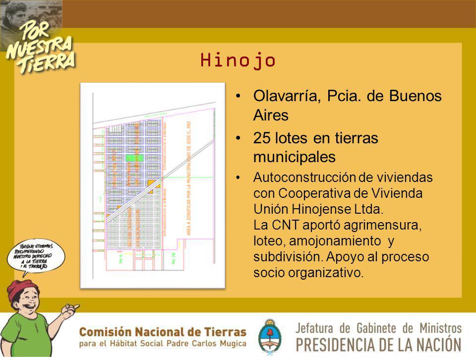 Hinojo Olavarría, Pcia. de Buenos Aires 25 lotes en tierras municipales Autoconstrucción de viviendas con Cooperativa de Vivienda Unión Hinojense Ltda