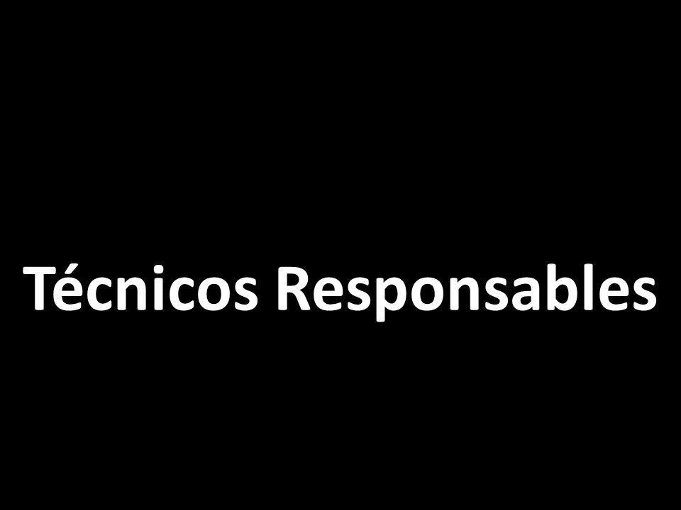 Técnicos Responsables