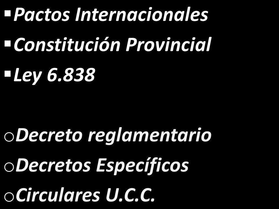Pactos Internacionales Constitución Provincial Ley 6.838 o Decreto reglamentario o Decretos Específicos o Circulares U.C.C.