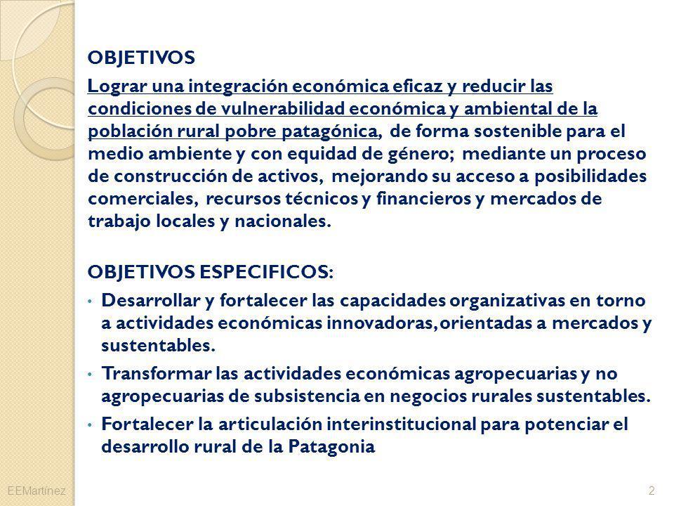 OBJETIVOS Lograr una integración económica eficaz y reducir las condiciones de vulnerabilidad económica y ambiental de la población rural pobre patagó