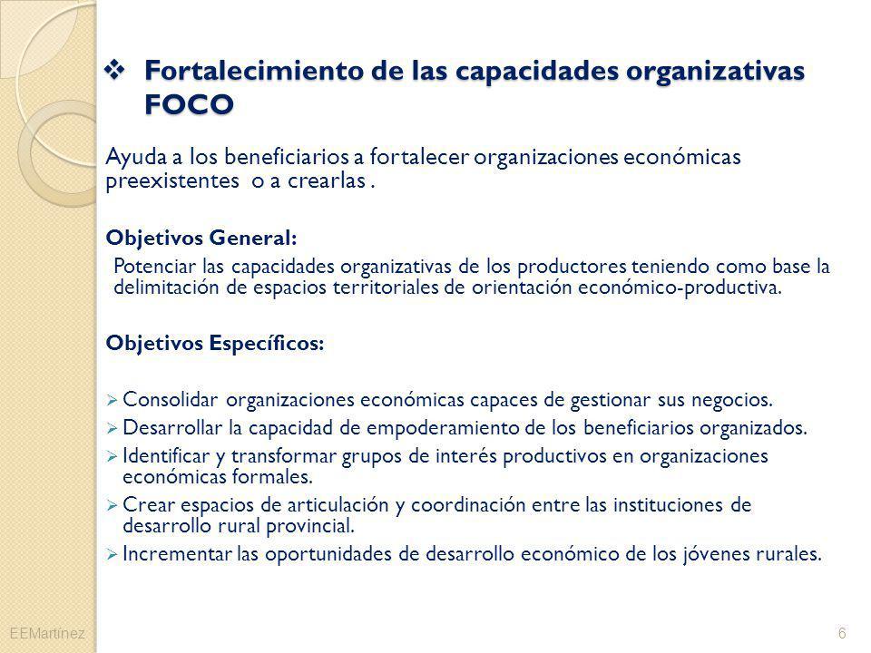 Fortalecimiento de las capacidades organizativas FOCO Fortalecimiento de las capacidades organizativas FOCO Ayuda a los beneficiarios a fortalecer org