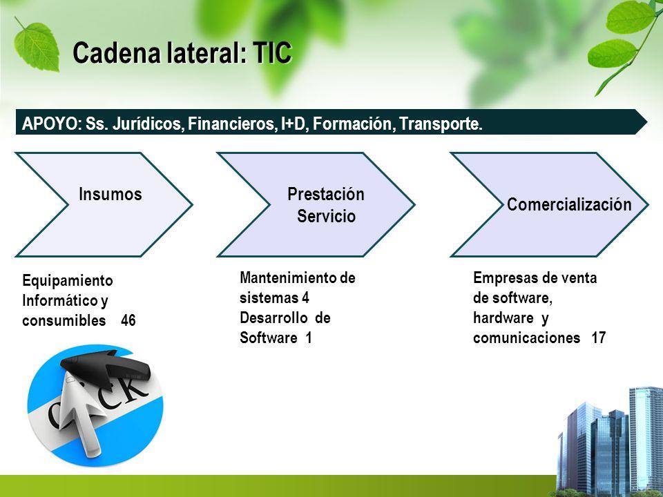 Cadena lateral: TIC InsumosPrestación Servicio Comercialización Mantenimiento de sistemas 4 Desarrollo de Software 1 Empresas de venta de software, hardware y comunicaciones 17 Equipamiento Informático y consumibles 46 APOYO: Ss.