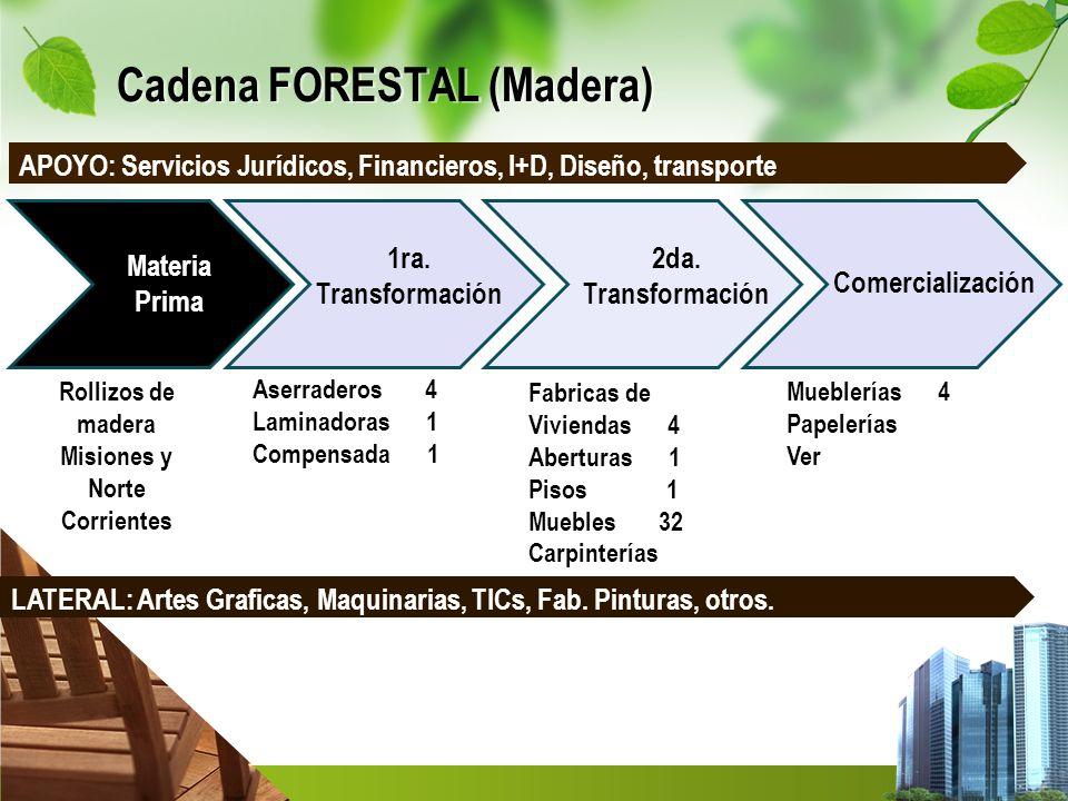 Cadena FORESTAL (Madera) Materia Prima 1ra. Transformación 2da. Transformación Comercialización Aserraderos 4 Laminadoras 1 Compensada 1 Fabricas de V
