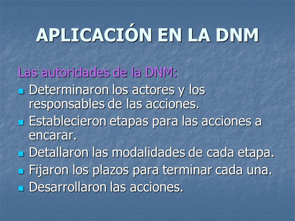 APLICACIÓN EN LA DNM Las autoridades de la DNM: Determinaron los actores y los responsables de las acciones. Determinaron los actores y los responsabl