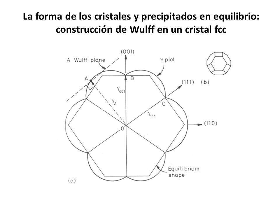 La forma de los cristales y precipitados en equilibrio: construcción de Wulff en un cristal fcc