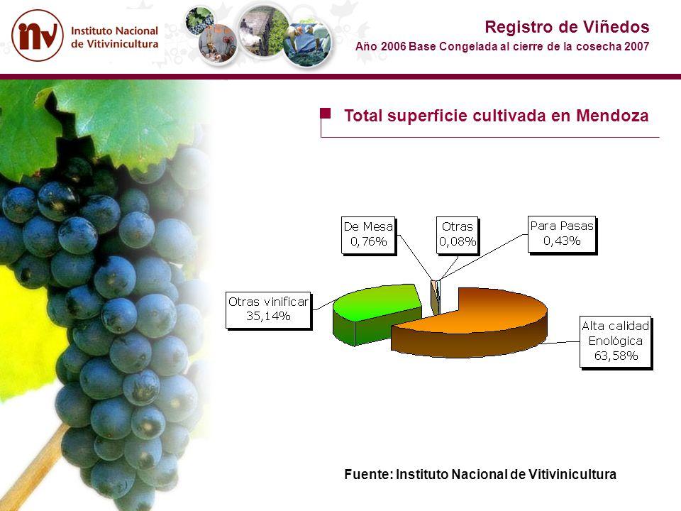 Total superficie cultivada en Mendoza Registro de Viñedos Año 2006 Base Congelada al cierre de la cosecha 2007 Fuente: Instituto Nacional de Vitivinic