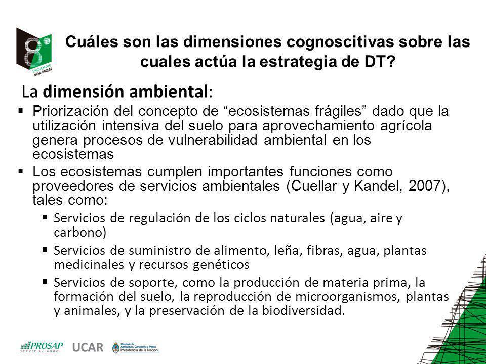 Cuáles son las dimensiones cognoscitivas sobre las cuales actúa la estrategia de DT? La dimensión ambiental: Priorización del concepto de ecosistemas