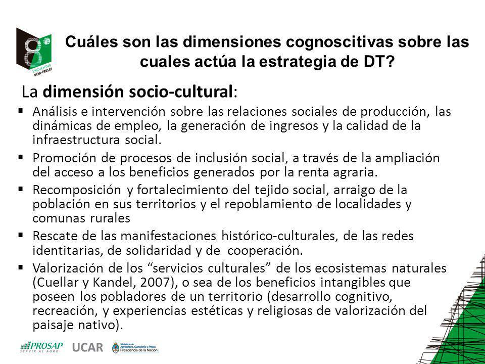 Cuáles son las dimensiones cognoscitivas sobre las cuales actúa la estrategia de DT? La dimensión socio-cultural: Análisis e intervención sobre las re
