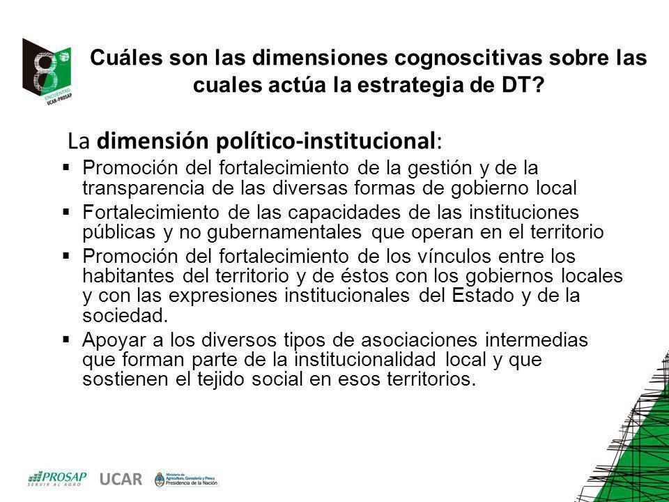 Cuáles son las dimensiones cognoscitivas sobre las cuales actúa la estrategia de DT? La dimensión político-institucional: Promoción del fortalecimient