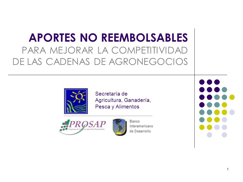 Banco Interamericano de Desarrollo 1 APORTES NO REEMBOLSABLES PARA MEJORAR LA COMPETITIVIDAD DE LAS CADENAS DE AGRONEGOCIOS Secretaría de Agricultura,