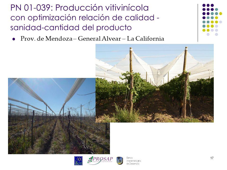 Banco Interamericano de Desarrollo 17 PN 01-039: Producción vitivinícola con optimización relación de calidad - sanidad-cantidad del producto Prov. de