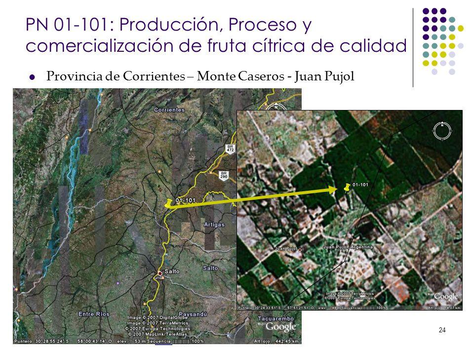 Banco Interamericano de Desarrollo 24 PN 01-101: Producción, Proceso y comercialización de fruta cítrica de calidad Provincia de Corrientes – Monte Ca
