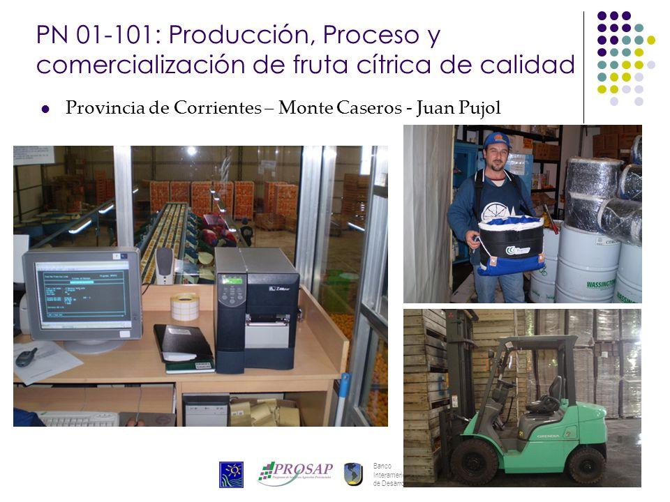 Banco Interamericano de Desarrollo 25 PN 01-101: Producción, Proceso y comercialización de fruta cítrica de calidad Provincia de Corrientes – Monte Ca