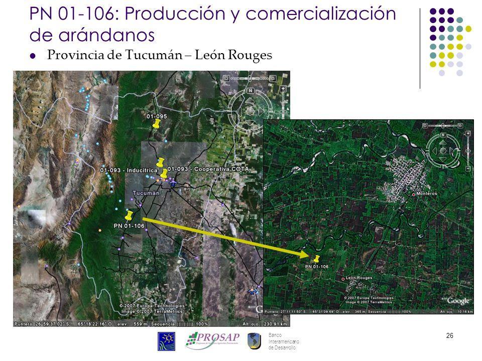 Banco Interamericano de Desarrollo 26 PN 01-106: Producción y comercialización de arándanos Provincia de Tucumán – León Rouges