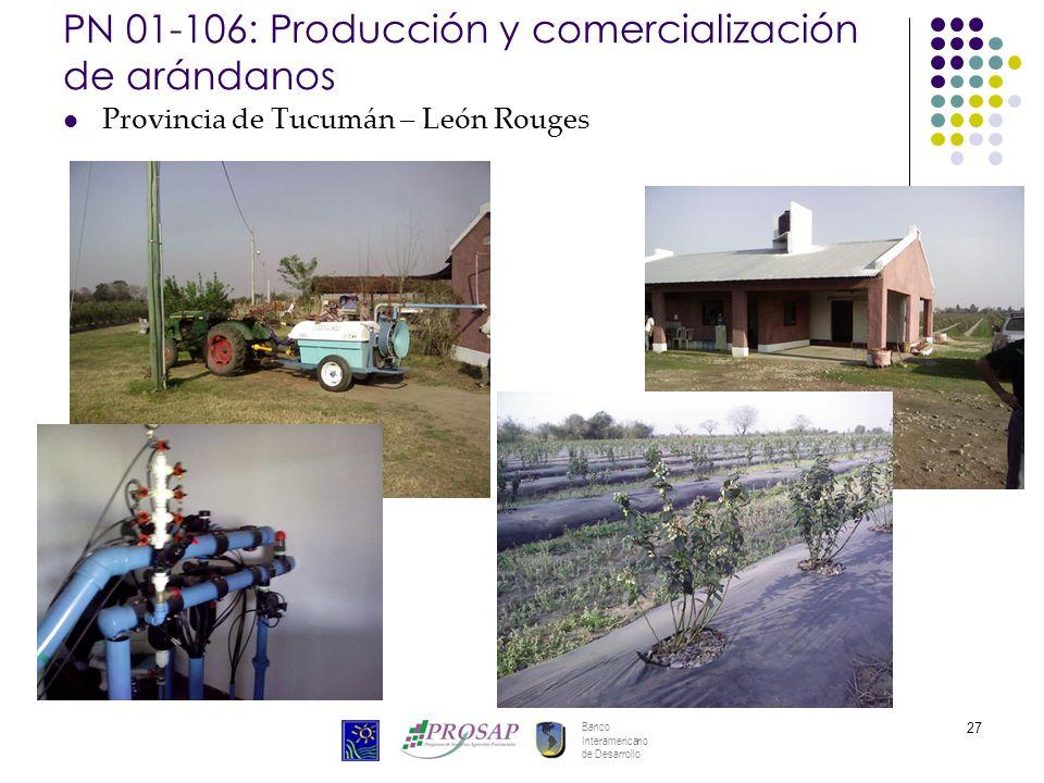 Banco Interamericano de Desarrollo 27 PN 01-106: Producción y comercialización de arándanos Provincia de Tucumán – León Rouges