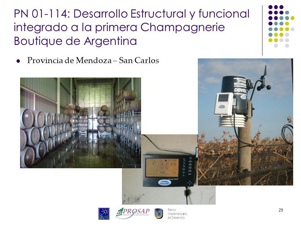 Banco Interamericano de Desarrollo 29 PN 01-114: Desarrollo Estructural y funcional integrado a la primera Champagnerie Boutique de Argentina Provinci