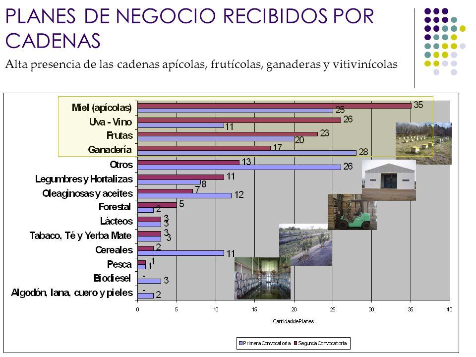 Banco Interamericano de Desarrollo Alta presencia de las cadenas apícolas, frutícolas, ganaderas y vitivinícolas PLANES DE NEGOCIO RECIBIDOS POR CADEN