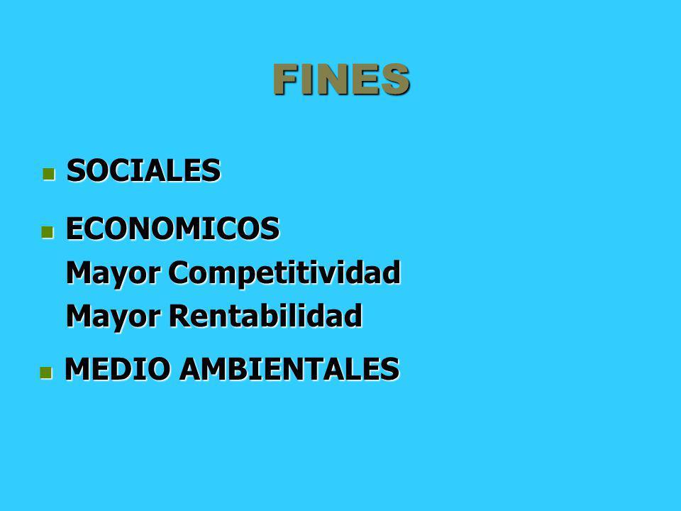 FINES SOCIALES SOCIALES ECONOMICOS ECONOMICOS Mayor Competitividad Mayor Rentabilidad MEDIO AMBIENTALES MEDIO AMBIENTALES