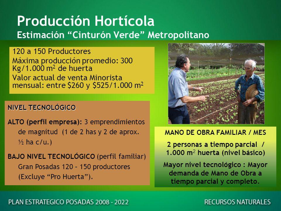 Producción Hortícola de Hoja Mensual 1 – Nivel Actual: 150 – 300 kg /1.000 m 2 huerta 2 - Potencial Optimizado Base: 1.200 kg/1.000 m 2 huerta.