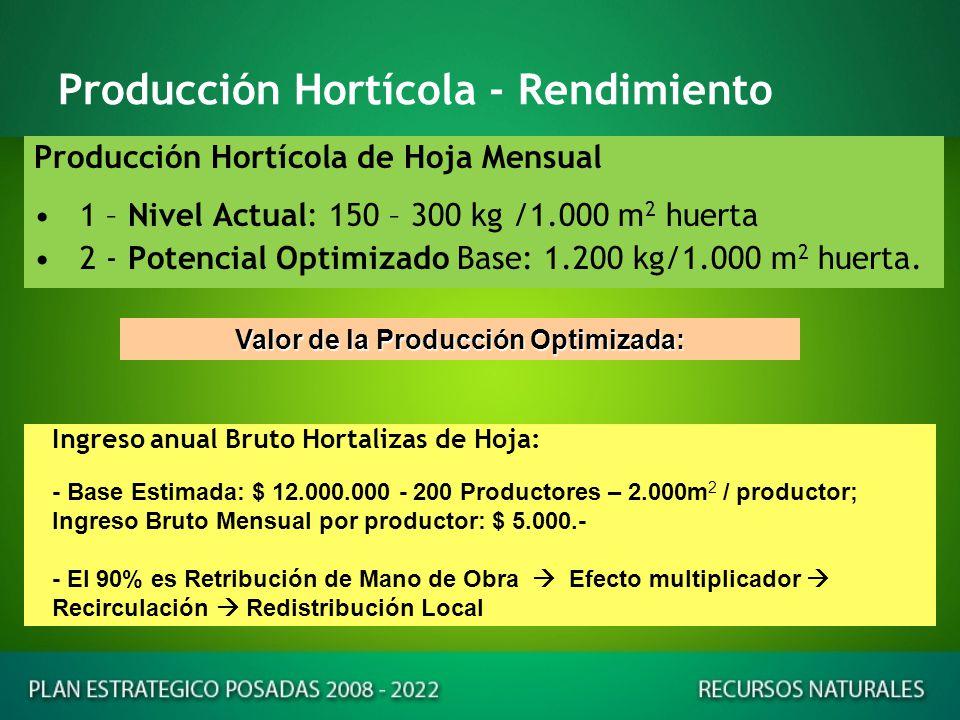 Situación del Mercado Local Estimaciones de consumo de Hortalizas y frutos ( Sin Papa – Cebolla y Mandioca) - España : 100 kg/habitante - Nacional: 36,5 kg/habitante - Local: 14,60 kg/habit.