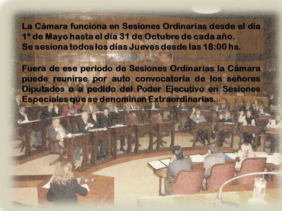 Actualmente esta conformada por 40 Diputados Los Legisladores duran 4 años en su mandato, teniendo la posibilidad de ser reelectos.