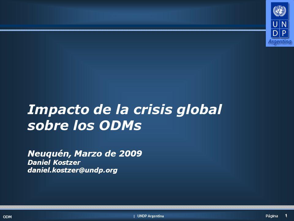 | UNDP Argentina ODM 1 1 Página Impacto de la crisis global sobre los ODMs Neuquén, Marzo de 2009 Daniel Kostzer daniel.kostzer@undp.org