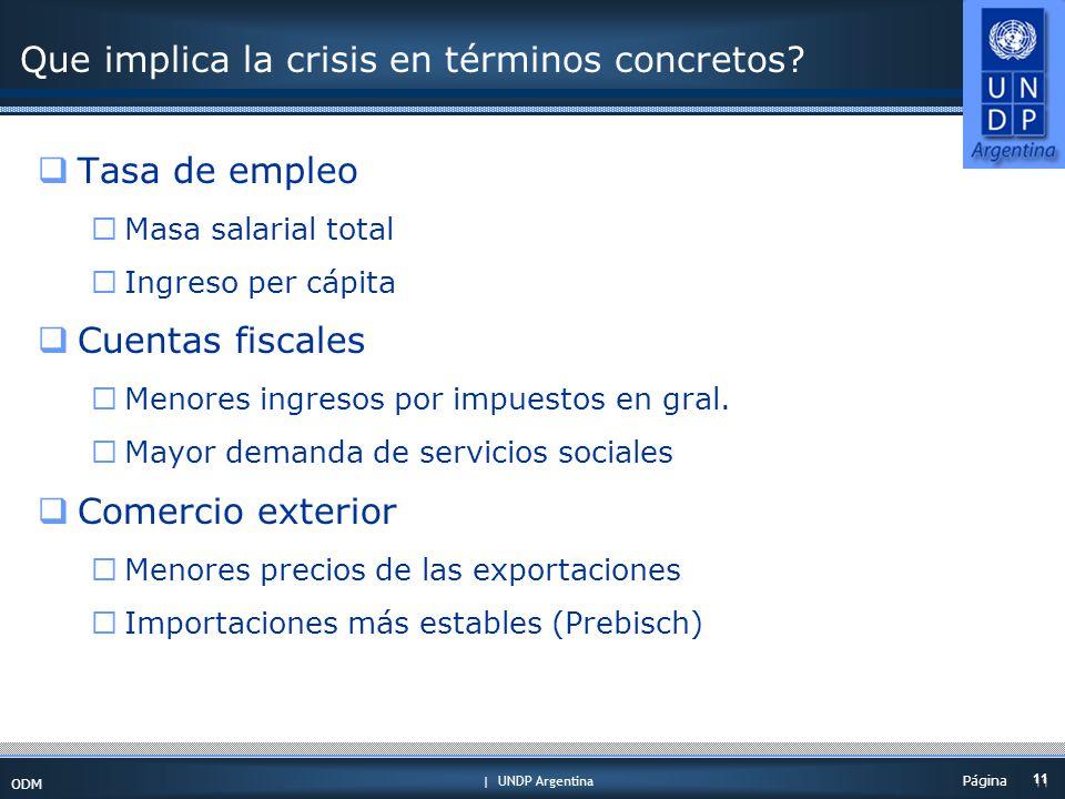 | UNDP Argentina ODM 11 Página Que implica la crisis en términos concretos.