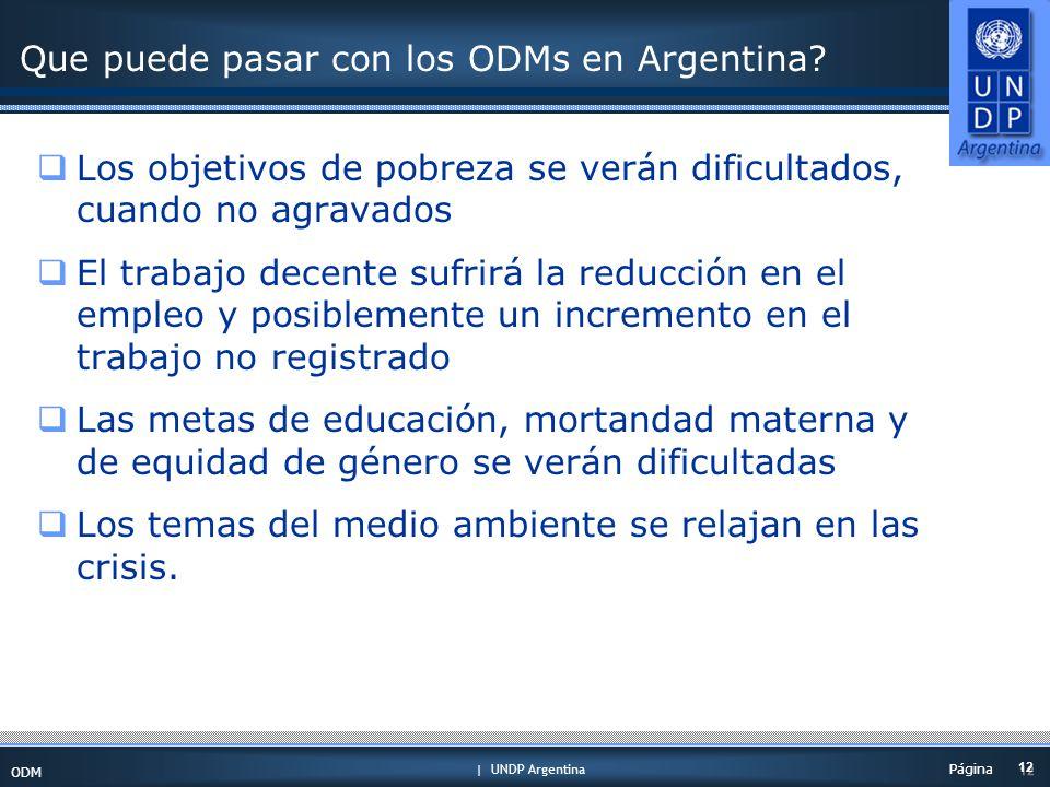 | UNDP Argentina ODM 12 Página Que puede pasar con los ODMs en Argentina.