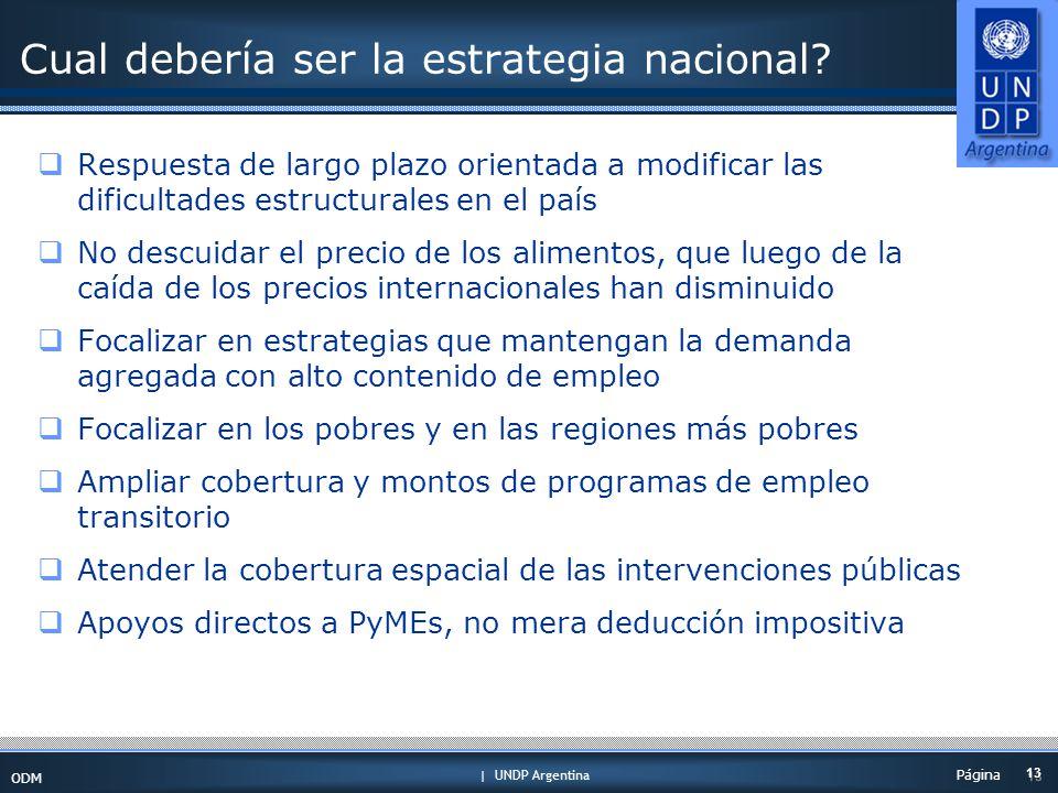 | UNDP Argentina ODM 13 Página Cual debería ser la estrategia nacional.