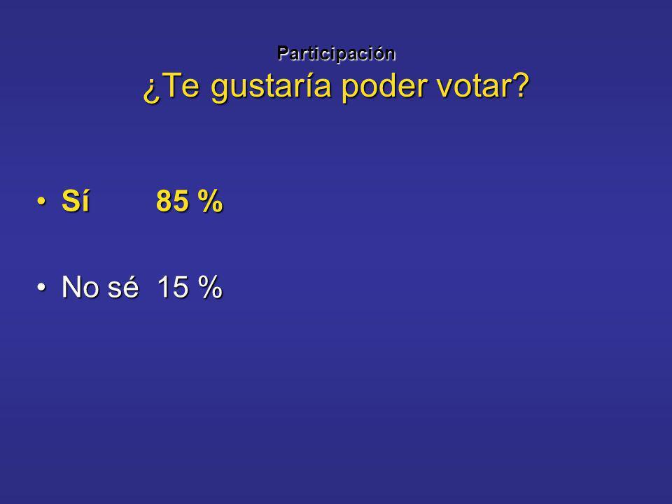 Participación ¿Te gustaría poder votar Sí 85 %Sí 85 % No sé 15 %No sé 15 %