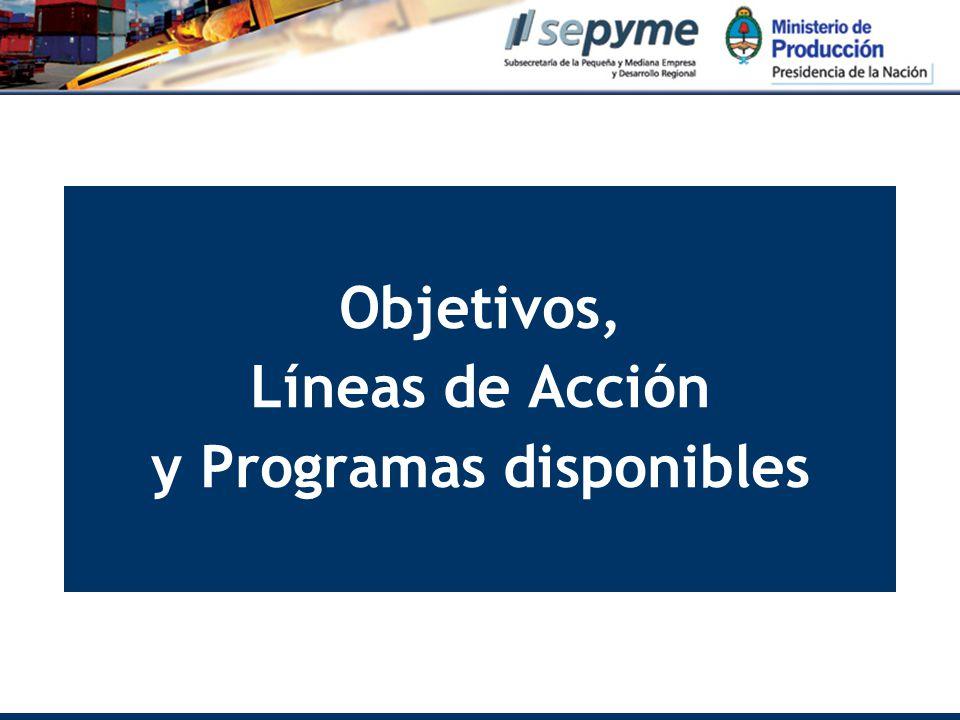 Objetivos, Líneas de Acción y Programas disponibles