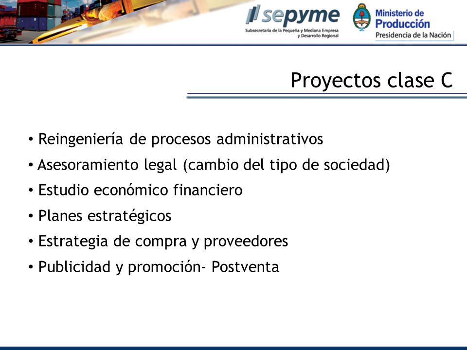 Proyectos clase C Reingeniería de procesos administrativos Asesoramiento legal (cambio del tipo de sociedad) Estudio económico financiero Planes estratégicos Estrategia de compra y proveedores Publicidad y promoción- Postventa