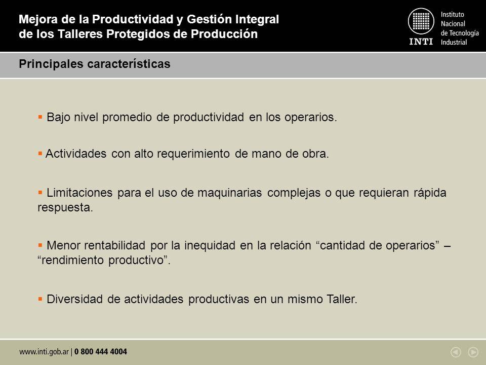 Mejora de la Productividad y Gestión Integral de los Talleres Protegidos de Producción Principales características Bajo nivel promedio de productivida