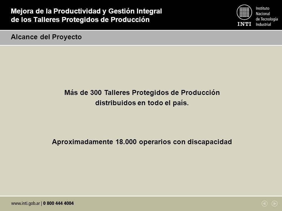 Mejora de la Productividad y Gestión Integral de los Talleres Protegidos de Producción Alcance del Proyecto Más de 300 Talleres Protegidos de Producci