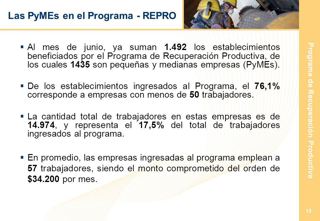 Programa de Recuperación Productiva 13 Las PyMEs en el Programa - REPRO Al mes de junio, ya suman 1.492 los establecimientos beneficiados por el Programa de Recuperación Productiva, de los cuales 1435 son pequeñas y medianas empresas (PyMEs).