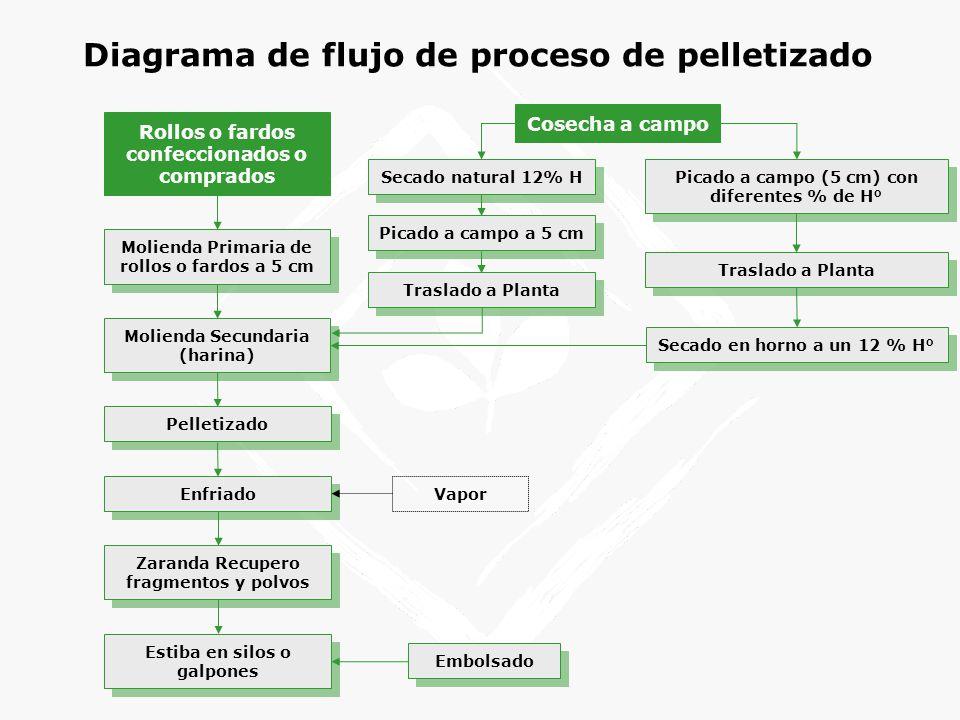 Diagrama de flujo de proceso de pelletizado Cosecha a campo Secado natural 12% H Picado a campo (5 cm) con diferentes % de H° Vapor Enfriado Rollos o fardos confeccionados o comprados Estiba en silos o galpones Secado en horno a un 12 % H° Embolsado Molienda Secundaria (harina) Zaranda Recupero fragmentos y polvos Traslado a Planta Picado a campo a 5 cm Traslado a Planta Molienda Primaria de rollos o fardos a 5 cm Pelletizado