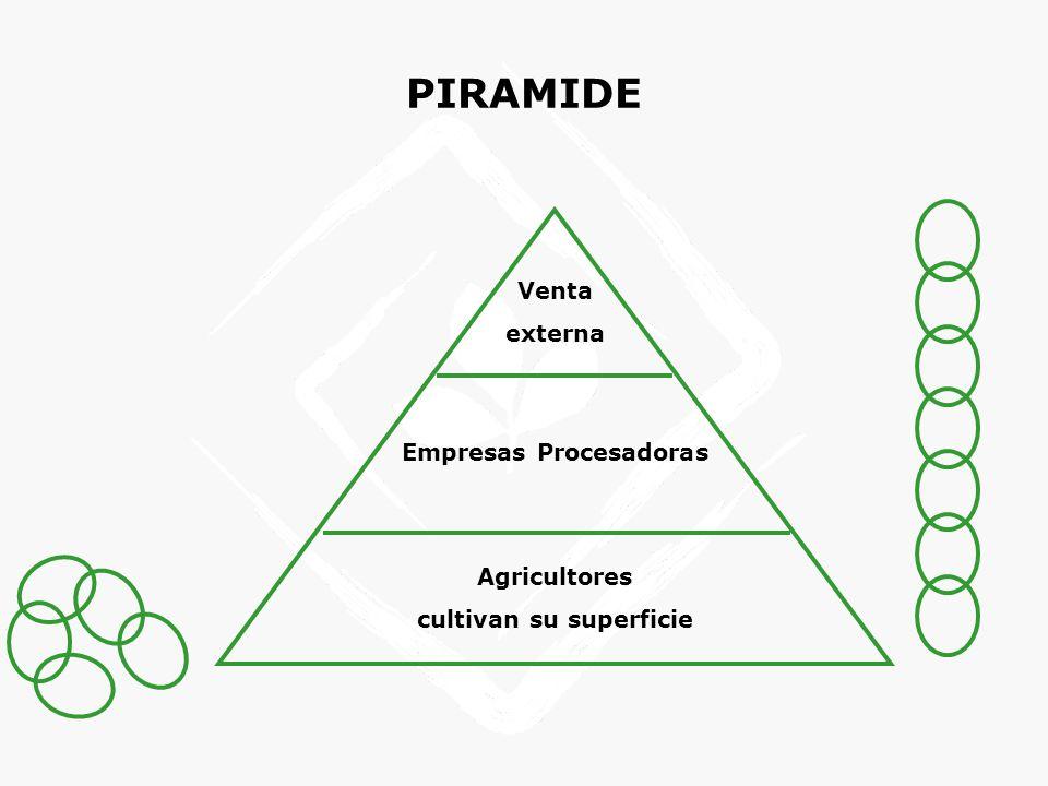 PIRAMIDE Venta externa Empresas Procesadoras Agricultores cultivan su superficie