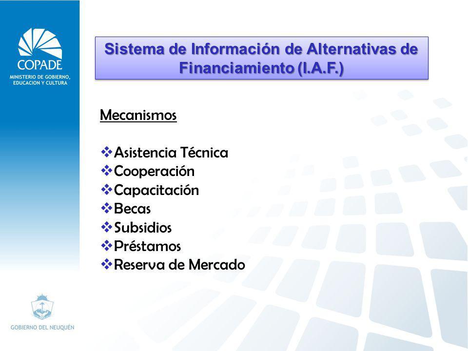 La visión del Sistema de Información de Alternativas de Financiamiento (IAF) es la de proyectarse como una herramienta que colabore con cada gestión de gobierno a través de la identificación, análisis, selección y gestión de los mecanismos de financiamiento más apropiados y eficiente para cada proyecto de inversión.
