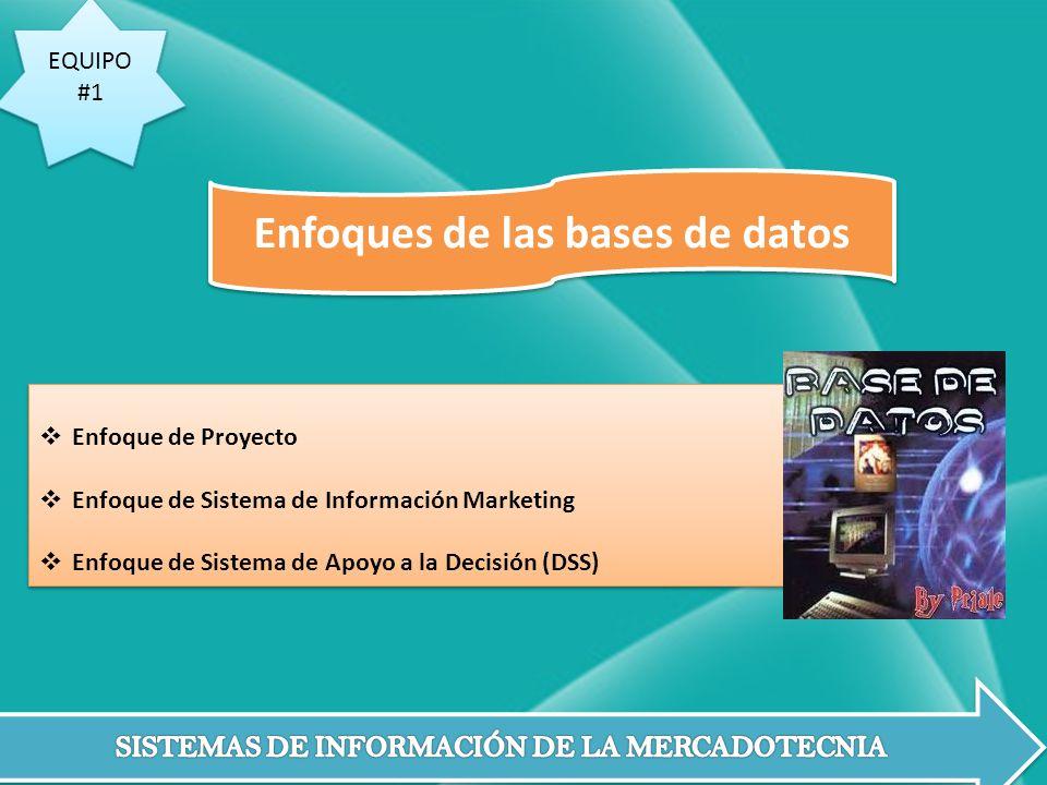 EQUIPO #1 EQUIPO #1 Enfoque de Proyecto Enfoque de Sistema de Información Marketing Enfoque de Sistema de Apoyo a la Decisión (DSS) Enfoque de Proyect