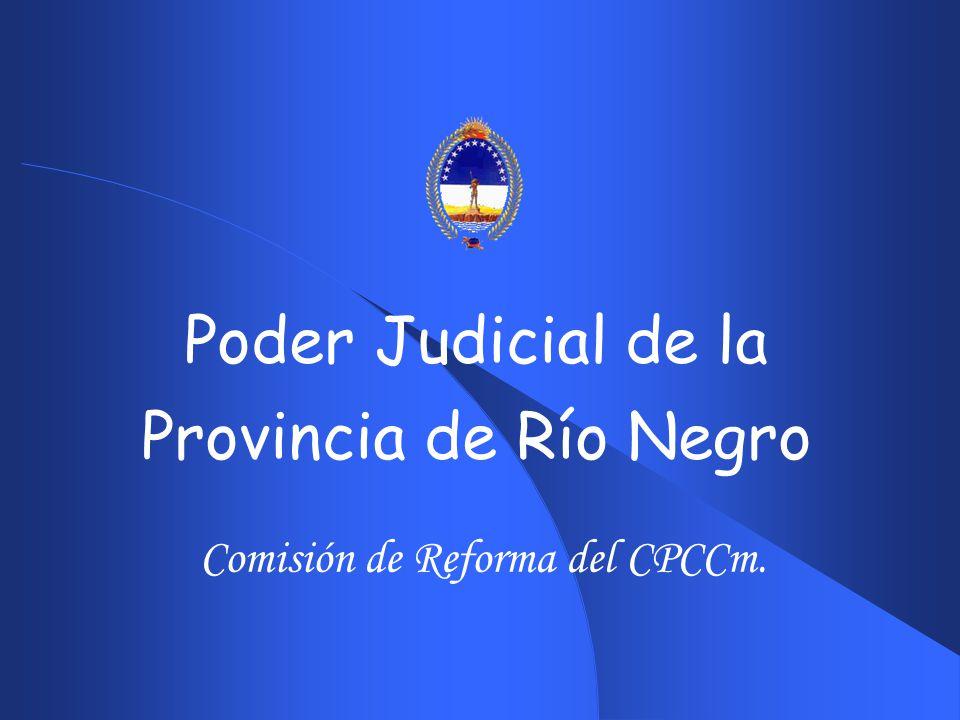 21 EL HOY DEL SERVICIO DE JUSTICIA EN RIO NEGRO.DISPONIBILIDAD EN LA WEB DEL DESPACHO DIARIO.
