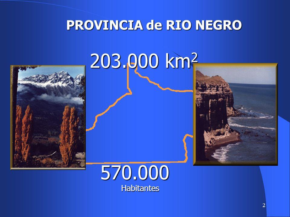 2 PROVINCIA de RIO NEGRO 570.000 Habitantes 203.000 km 2
